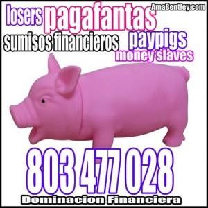 AMA FINANCIERA POR 803 WEBCAM Y REAL