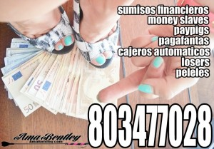 DOMINA FINANCIERA AMA FINANCIERA WEBCAM 803 REAL