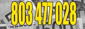 DOMINA FINANCIERA POR WEBCAM Y 803 2