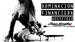 DOMINACION FINANCIERA POR 803 WEBCAM REAL