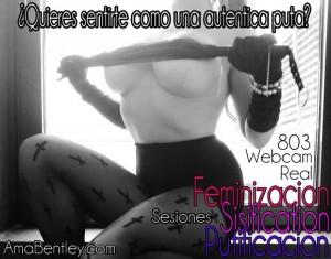 FEMINIZACION POR CAM Y 803