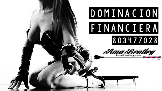 DOMINACION FINANCIERA POR 803 WEBCAM REAL